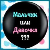 Шары МАЛЬЧИК или ДЕВОЧКА?