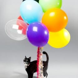 8 фактов, которые изменят ваше представление о воздушных шарах